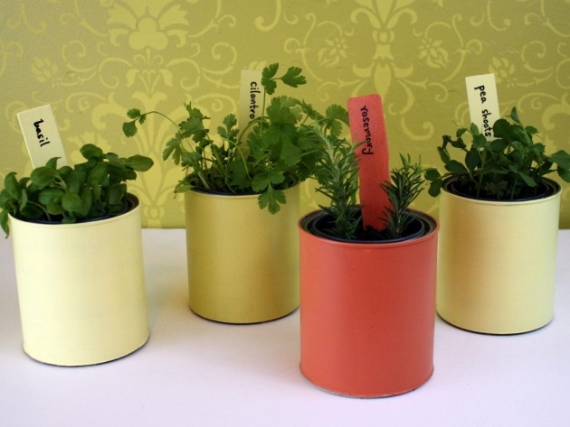 Amazing Diy Plant Pots Picture