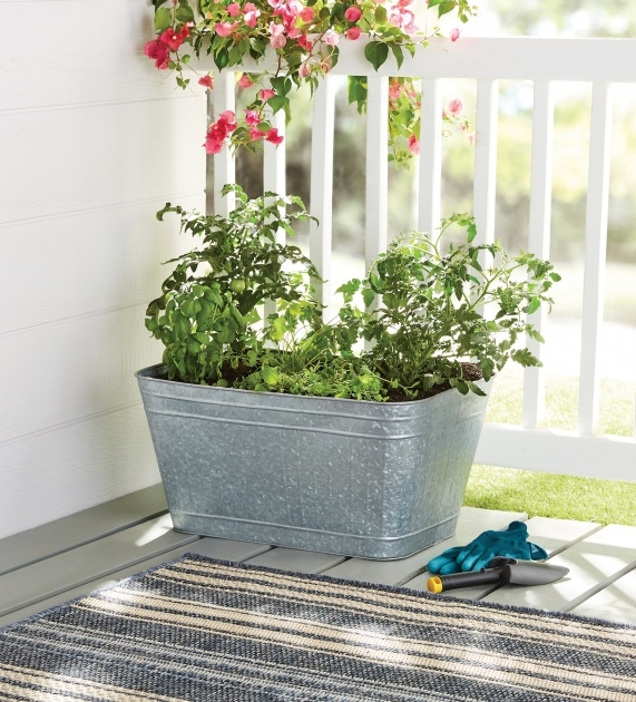 Amazing Galvanized Tub Planter Image