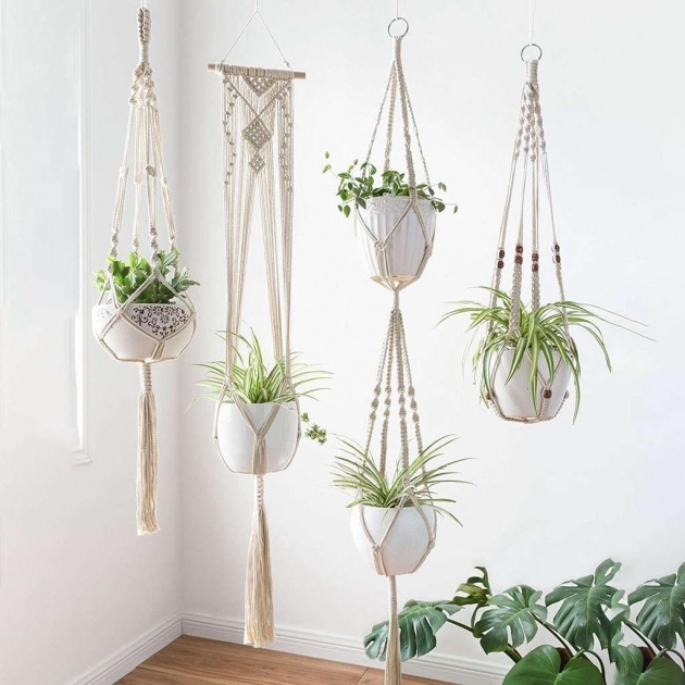 Amazing Hanging Plant Holders Image