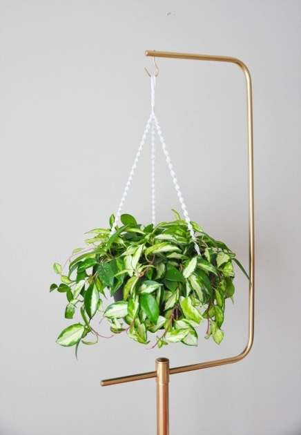 Amazing Hanging Plant Stand Photo
