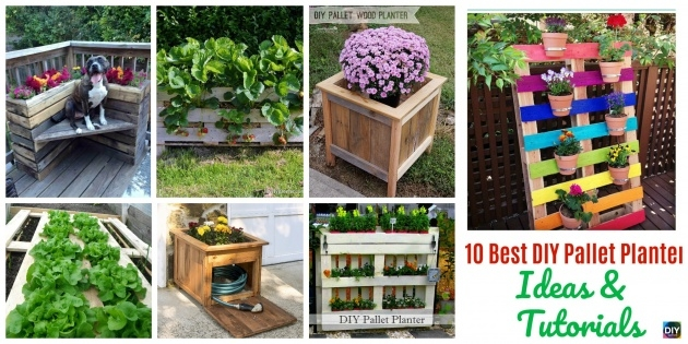 Amazing Pallet Planter Ideas Photo