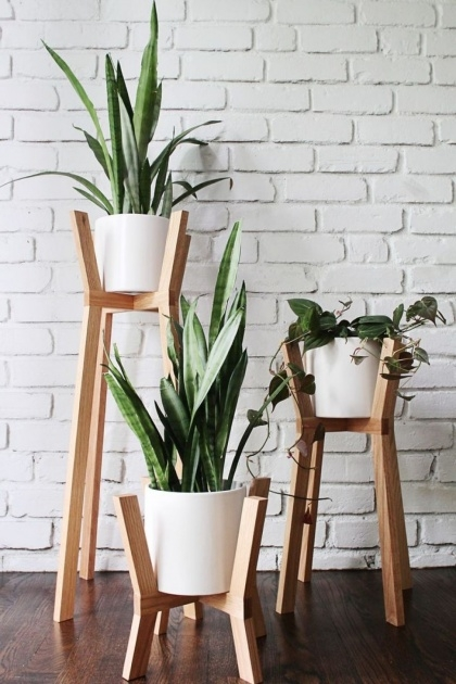 Amazing Plant Stand Indoor Image