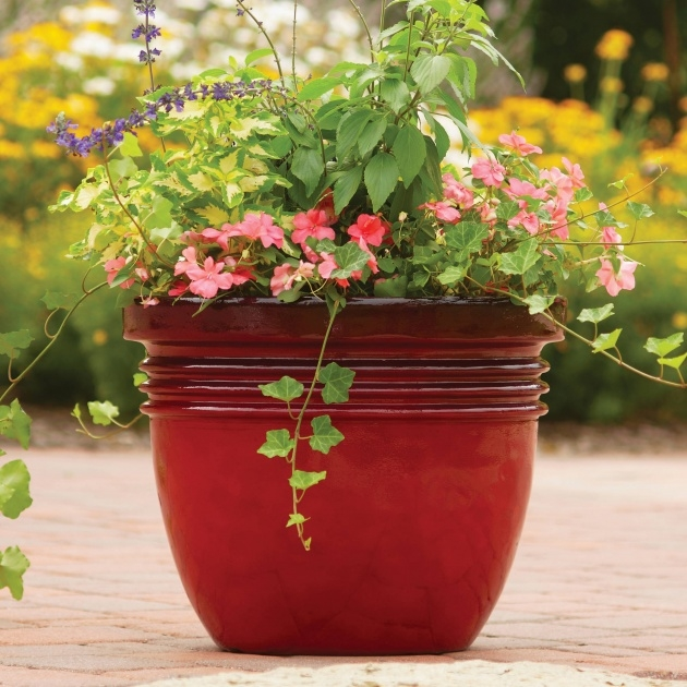 Amazing Pots And Planters Image