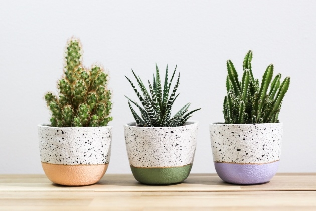 Amazing Split Pot Planter Image