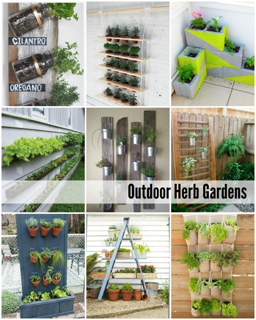 Amazingly Herb Planter Ideas Image