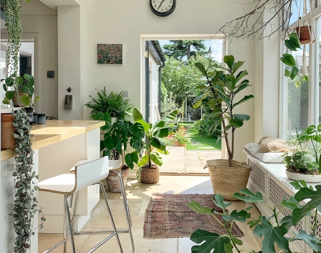 Amazingly Indoor Pot To Beutify House Image