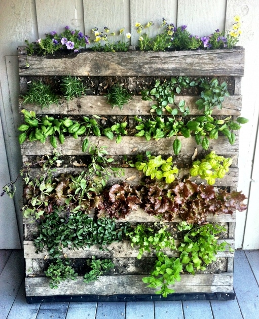 Amazingly Pallet Planter Photo