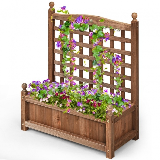 Amazingly Planter Box With Trellis Photo
