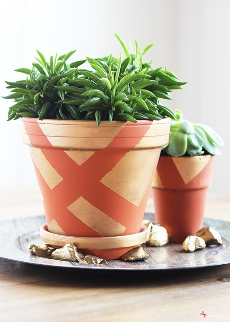 Amazingly Terracotta Planter Ideas Photo