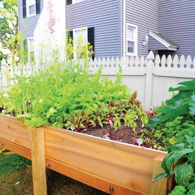 Amazingly Vegetable Garden Planter Box Picture