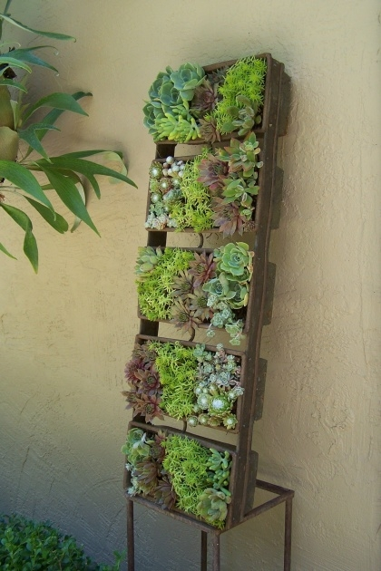 Amazingly Vertical Succulent Planter Photo