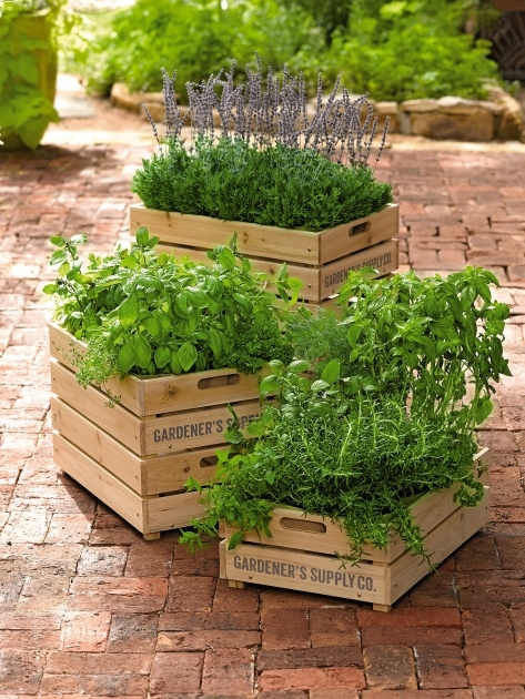 Amazingly Wooden Crate Planter Photo