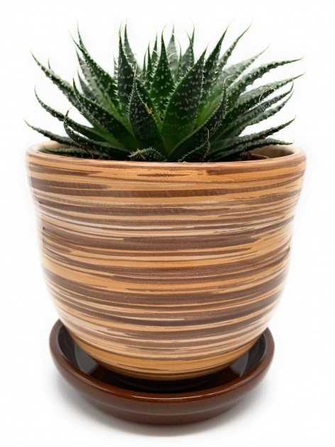 Awesome Ceramic Plant Pots Picture