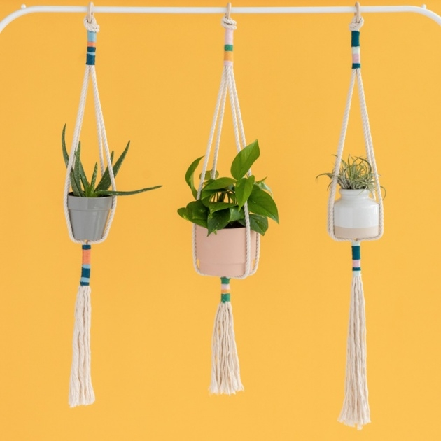 Awesome Diy Rope Plant Hanger Photo