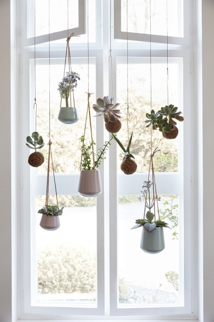 Awesome Hanging Window Planter Image