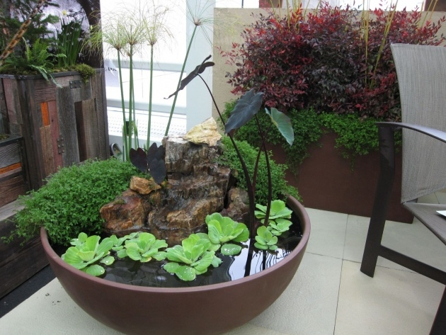 Awesome Indoor Water Garden Design Photo