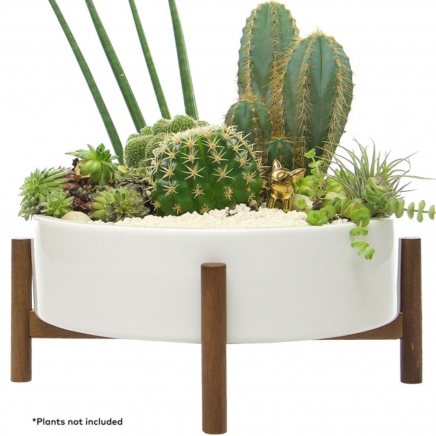 Awesome Modern Indoor Planters Image