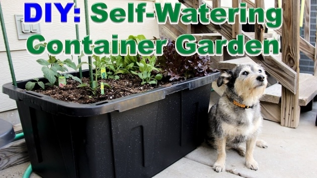 Awesome Self Watering Planters Diy Image