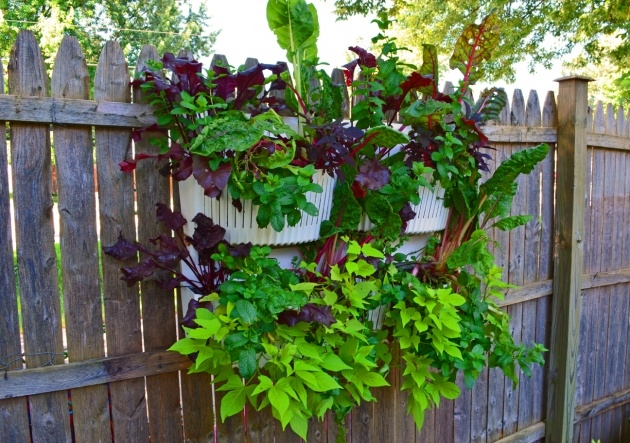 Awesome Vertical Vegetable Garden Planters Picture