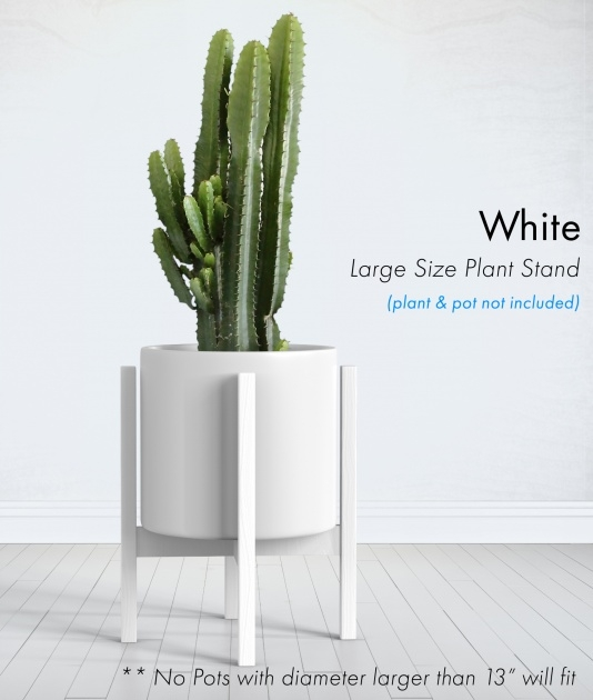 Awesome White Plant Pots Photo