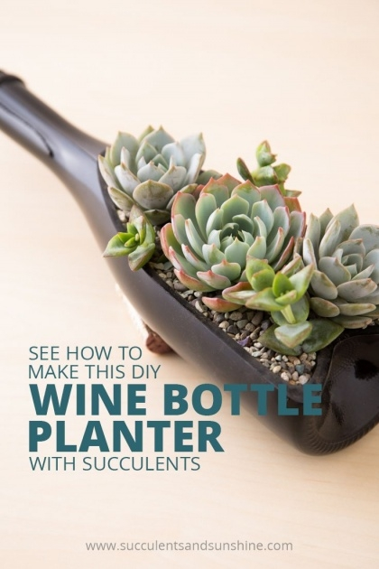 Awesome Wine Bottle Planter Picture