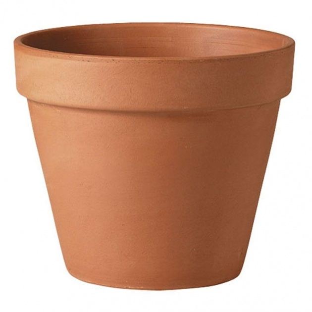 Best Clay Pots For Plants Picture