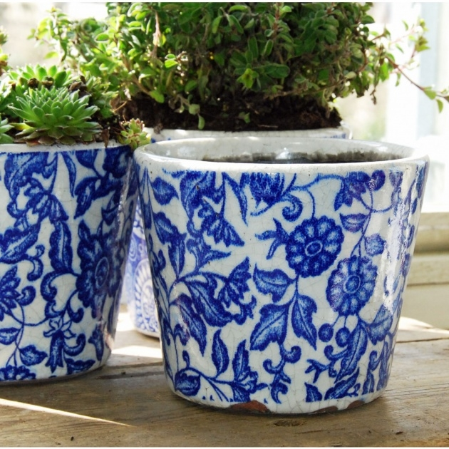 Best Cool Blue And White Plant Pot Image