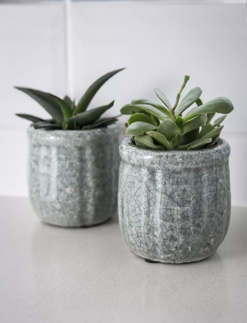 Best Cool Indoor Ceramic Planters Picture