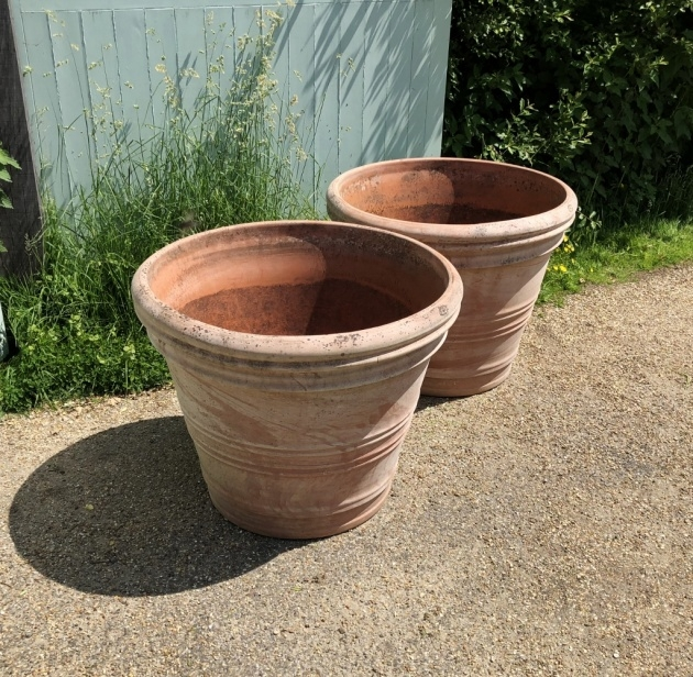Best Cool Large Terracotta Planter Image