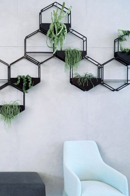 Best Cool Large Wall Planters Photo