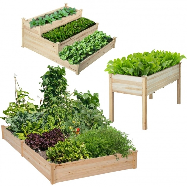 Best Cool Vegetable Planter Picture
