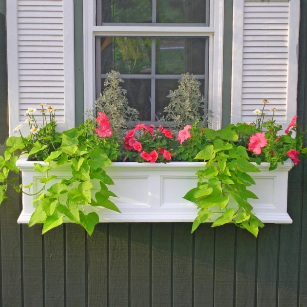 Best Cool Window Sill Planter Box Image