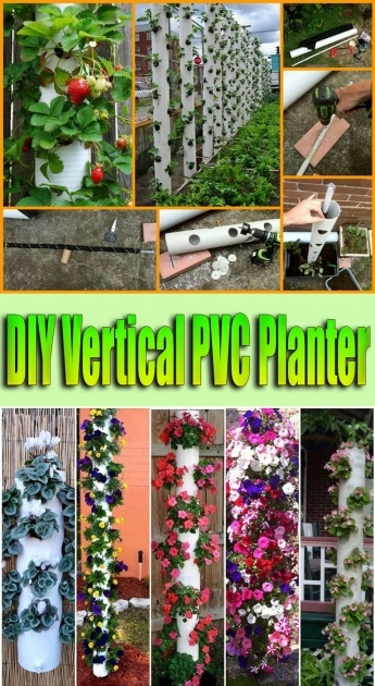Best Diy Pvc Planter Photo