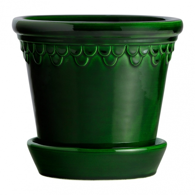 Best Green Plant Pot Image