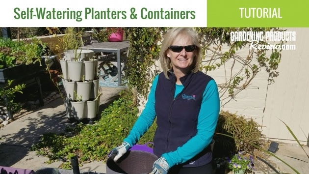 Best How Do Self Watering Planters Work Picture