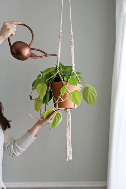 Best How To Make A Plant Hanger Picture
