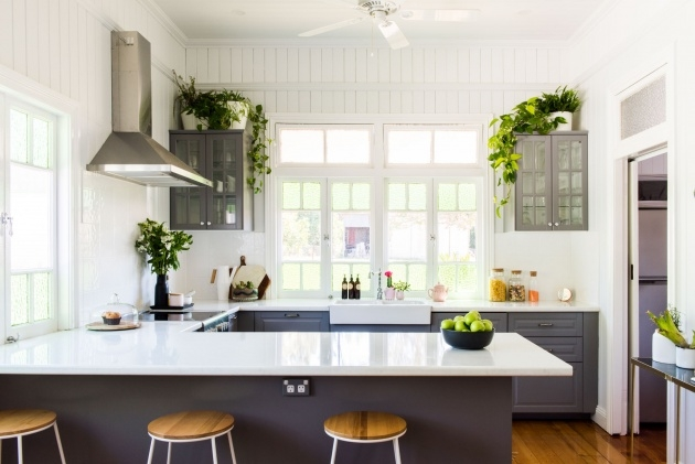 Best Kitchen Window Plants Image