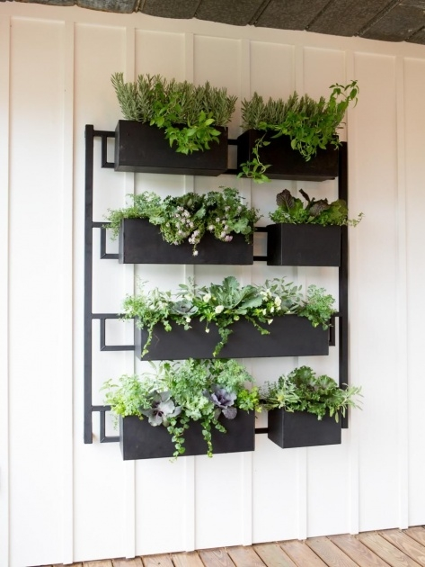 Best Outdoor Wall Planters Picture