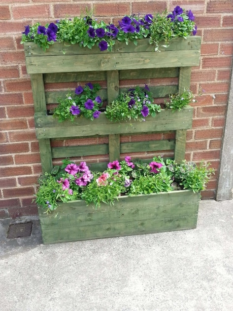 Best Pallet Planter Photo
