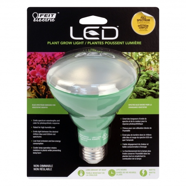 Best Plant Light Bulbs Image