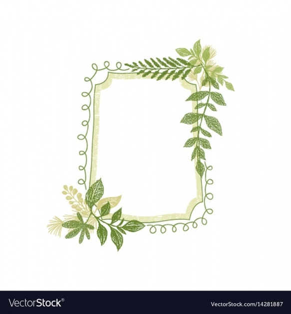 Best Plant Picture Frame Picture