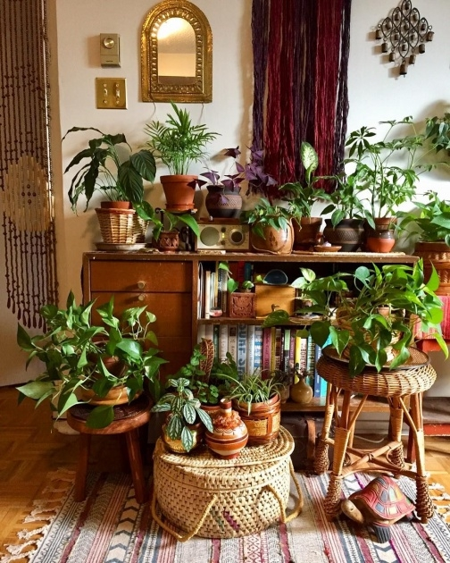 Best Plant Table Indoor Image