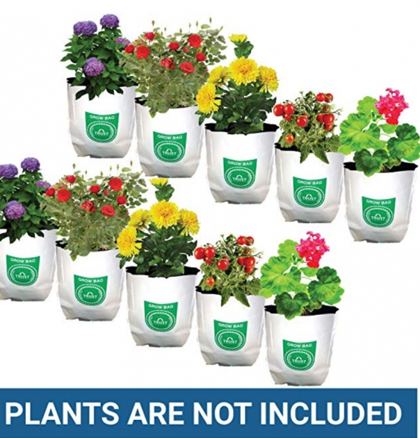 Best Poly Planter Bags Picture