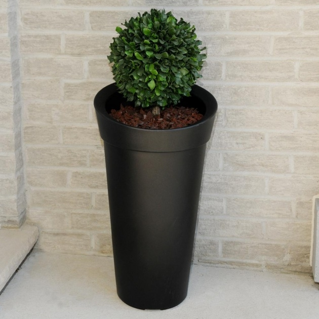 Best Tall Black Planter Picture