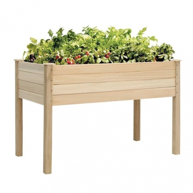 Best Vegetable Planter Box Picture