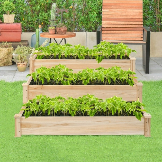 Best Vegetable Planter Image