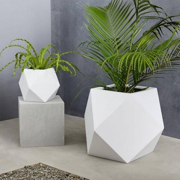 Best West Elm Planters Image
