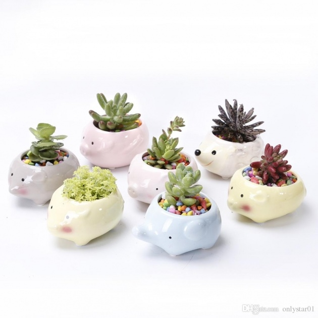 Cool Animal Plant Pots Image