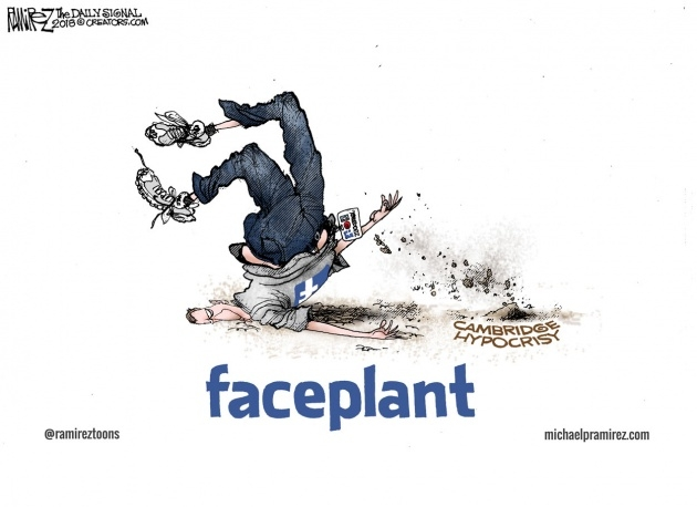 Cool Faceplant Picture