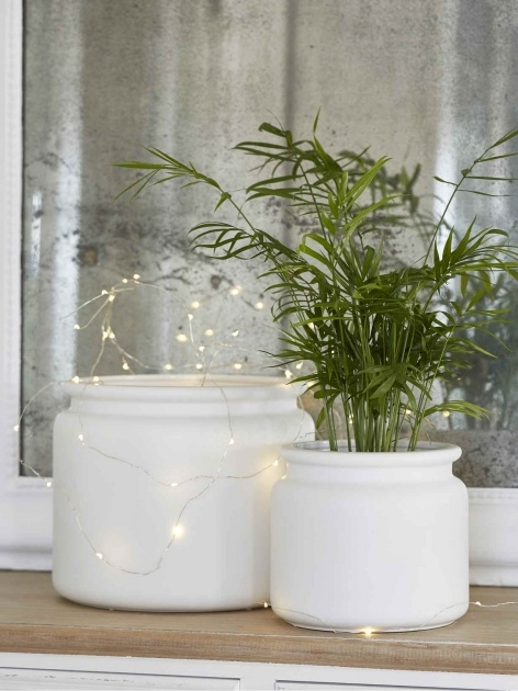 Cool Indoor Ceramic Planters Photo